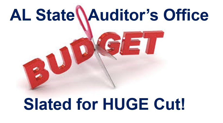 Don't Slash The State Auditor's Budget!
